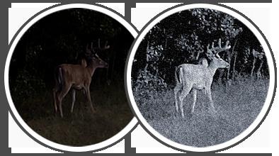 digital-night-vision-scope2
